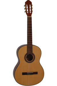 beginner guitar buying guide